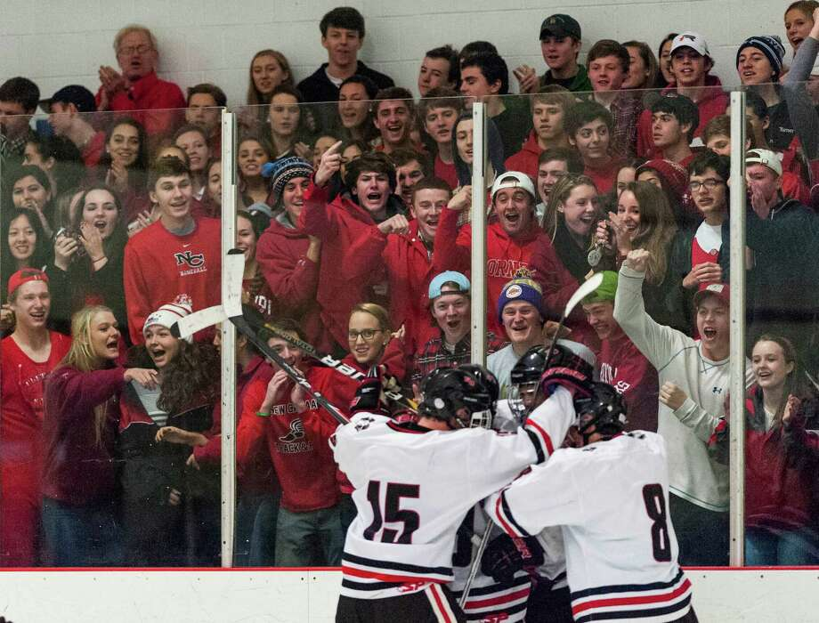 New Canaan high school fans celebrate after Peter Reinhardt scored a goal in the second period of a boys ice hockey game against Darien high school played at Darien Ice Rink, Darien CT on Saturday, January, 11th, 2014. Photo: Mark Conrad / Connecticut Post Freelance