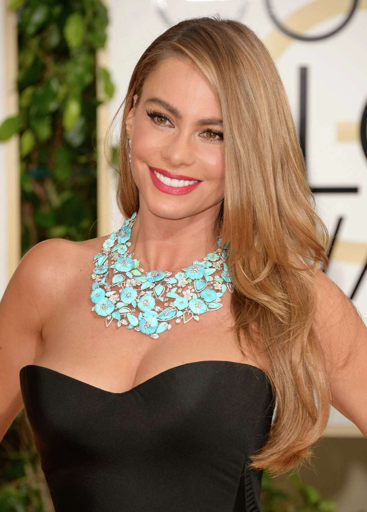 Sofia Vergara Claim to fame: 'Modern Family' The actress was born in Colombia and moved to Miami in the 1990's. She didn't have her first major English-speaking role until the 2003 film 'Chasing Papi.'