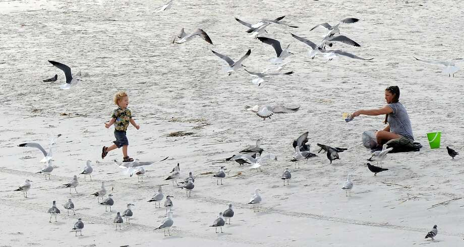 On Saturday Jan. 11, 2014 a family took advantage of the mild temperatures to play on the beach near the Jacksonville Beach Fishing Pier in Jacksonville Beach, Fla.  (AP Photo/The Florida Times-Union, Bob Mack) Photo: Bob Mack, Associated Press