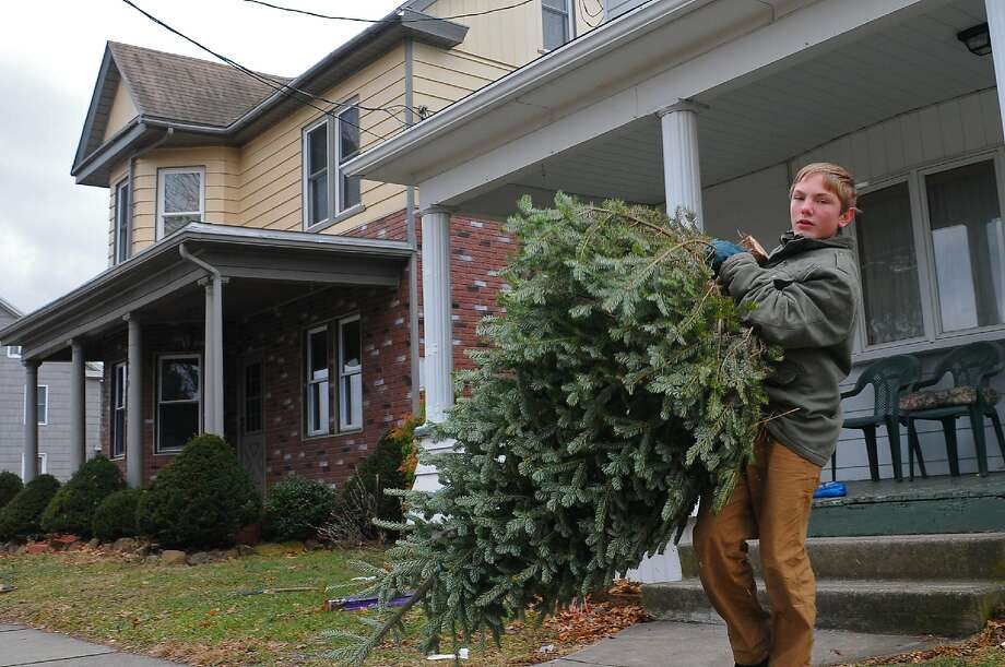 Blake Kakol, 13, of Ringtown, Pa., collects a Christmas tree, Sunday, Jan. 12, 2014, in Pottsville, Pa. Boy Scout Troop 731 in Ringtown collected the trees free of charge and will use them for animal habitat. (AP Photo/The Republican-Herald, Andy Matsko) MANDATORY CREDIT. Photo: Andy Matsko, Associated Press