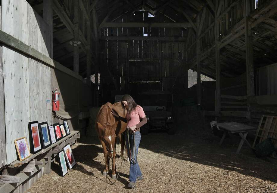 Anne Reiss pats her horse Rooster at Golden Gate Dairy Stables, which have been at Muir Beach for decades. Photo: Paul Chinn, The Chronicle
