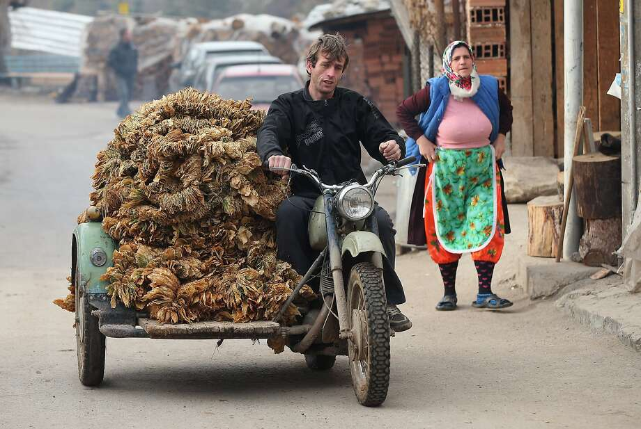 Bringing in the leaves: In Ribnovo, Bulgaria, a load of cured tobacco rides a motorcycle sidecar. Photo: Sean Gallup, Getty Images