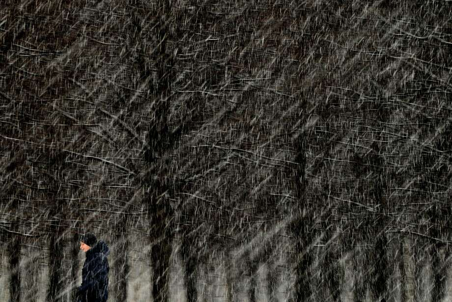 White Russian: A man walks through wet snow falling in a park in Moscow, where it felt much colder than the barely freezing temperatures due to a brisk wind. Photo: Kirill Kudryavtsev, AFP/Getty Images