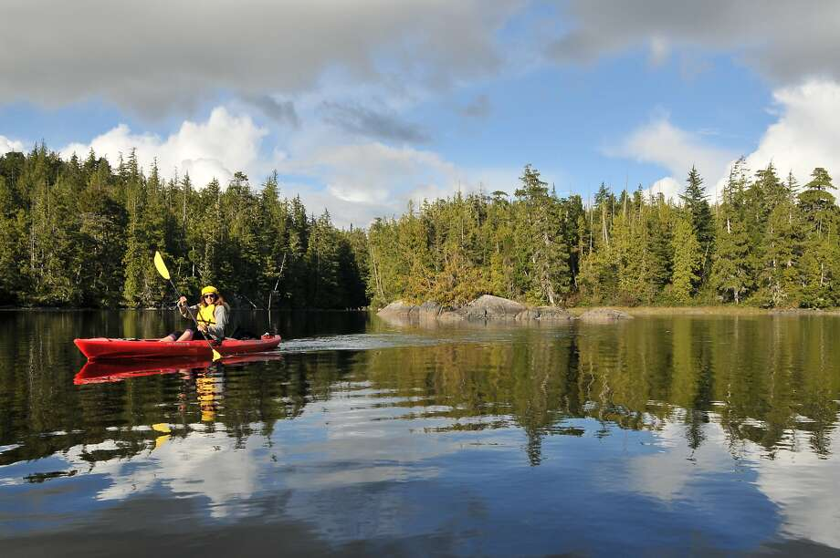 Kayaking around Blunden Harbour on the Great Bear Rainforest Coast. Photo: Margo Pfeiff, Special To The Chronicle