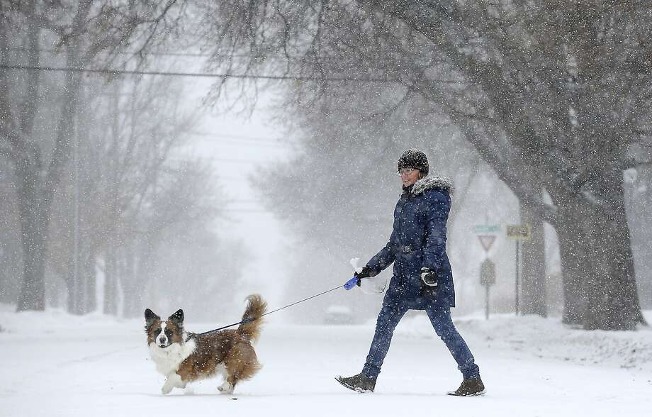 Olga Savinona walks her dog, Misha, near 7th Street and Duluth Avenue during the snow and wind in Sioux Falls, S.D., Thursday, Jan. 16, 2014. A blizzard warning was in effect for northeast and east-central South Dakota and a high wind warning was out for the central and southeast through Thursday evening.  (AP Photo/The Argus Leader, Emily Spartz)  NO SALES Photo: Emily Spartz, Associated Press