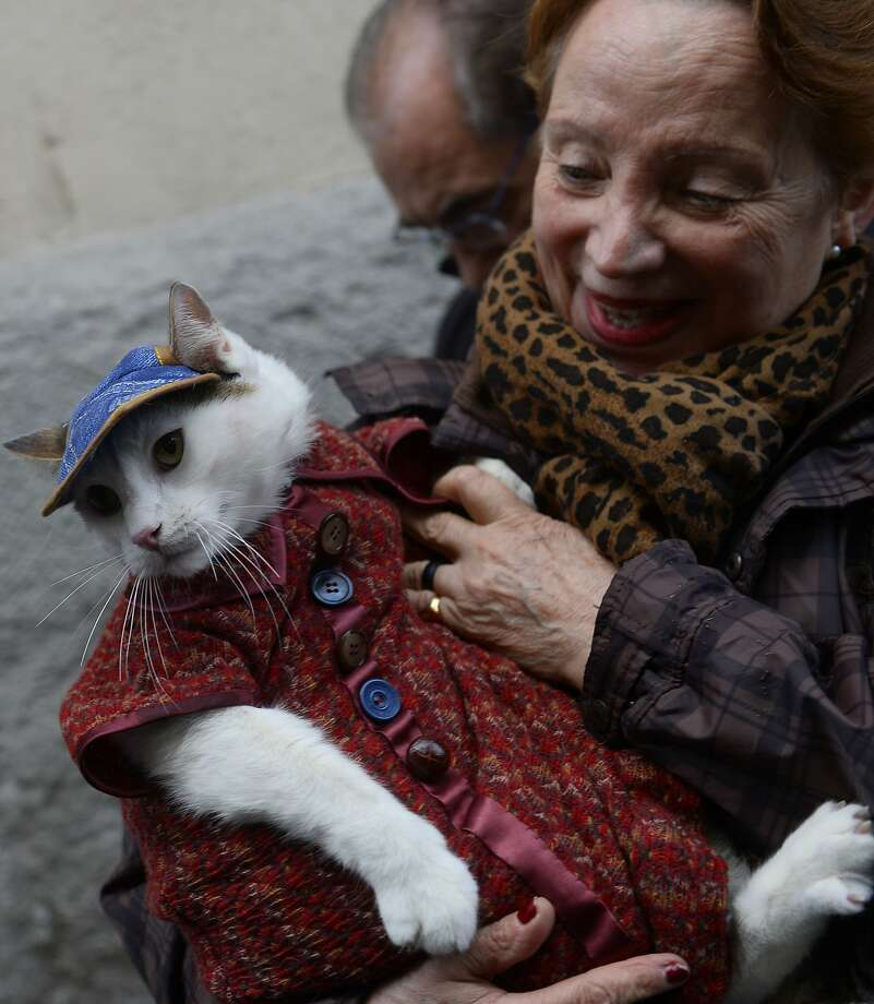Bless me, Father, for I have lost all dignity: If you must get your cat blessed on Saint Anthony's Day, don't do this. (San Anton Church in Madrid.) Photo: Pierre-Philippe Marcou, AFP/Getty Images