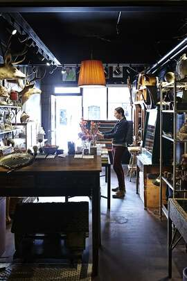 Interior of The Woods, a new oddities and curiosities shop in San Francisco's Mission District opened by sisters Sandy Wood and Lisa Wood (pictured).