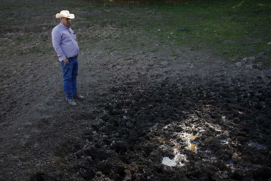 Frank Imhof checks out a pond on the property in Pleasanton that he leases for his cattle. There is usually 6 feet of water in the pond. Photo: Lacy Atkins, The Chronicle