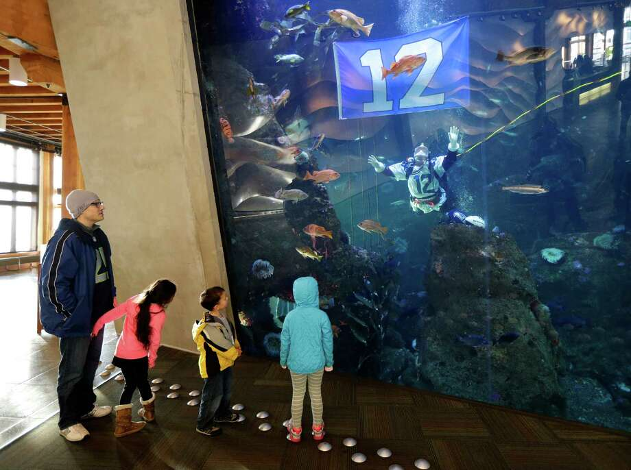 Visitors watch as Nicole Killebrew, a diver at the Seattle Aquarium, wears a Seattle Seahawks NFL football No. 12 jersey as she dives in a large interactive marine life display Friday, Jan. 17, 2014, in Seattle. The Seahawks will play the San Francisco 49ers on Sunday for the NFC championship in Seattle, and the aquarium was one of many locations around the city promoting the game. Photo: Ted S. Warren, AP / AP
