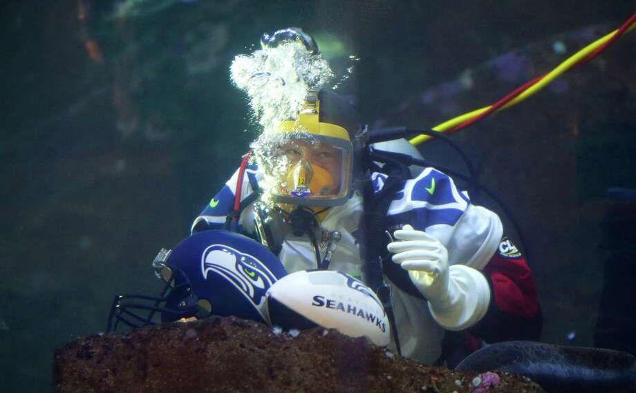Nicole Killebrew, a diver at the Seattle Aquarium, wears a Seattle Seahawks NFL football #12 jersey as she dives in a large interactive marine life display Friday, Jan. 17, 2014, in Seattle. The Seahawks will play the San Francisco 49ers on Sunday for the NFC championship in Seattle, and the aquarium was one of many locations around the city promoting the game. Photo: Ted S. Warren, AP / AP