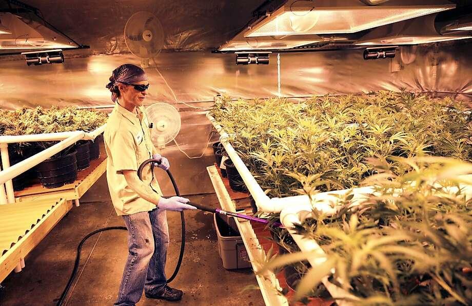 1987: Smoking marijuanaIs morally wrong: 70%Is not morally wrong: 25%No opinion: 5% Photo: Brennan Linsley, Associated Press