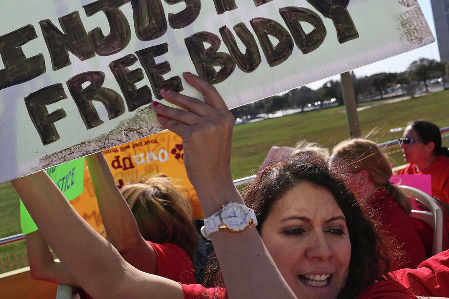 "Buddy supporters including Claudio Trevino yell ""Send Buddy Home"" while riding a City Sightseeing Double Decker Tours bus as they take the Rally to Return Buddy Home and Reform ACS Practices mobile in downtown San Antonio on Saturday, Jan. 18, 2014. Photo: Lisa Krantz, SAN ANTONIO EXPRESS-NEWS / SAN ANTONIO EXPRESS-NEWS"