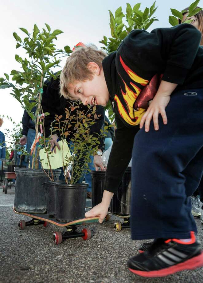 7-year-old Sam Dove assists with his skateboard as he hauls orange, black and blueberry, lemon and other plants. Photo: Craig Hartley, For The Chronicle / Copyright: Craig H. Hartley