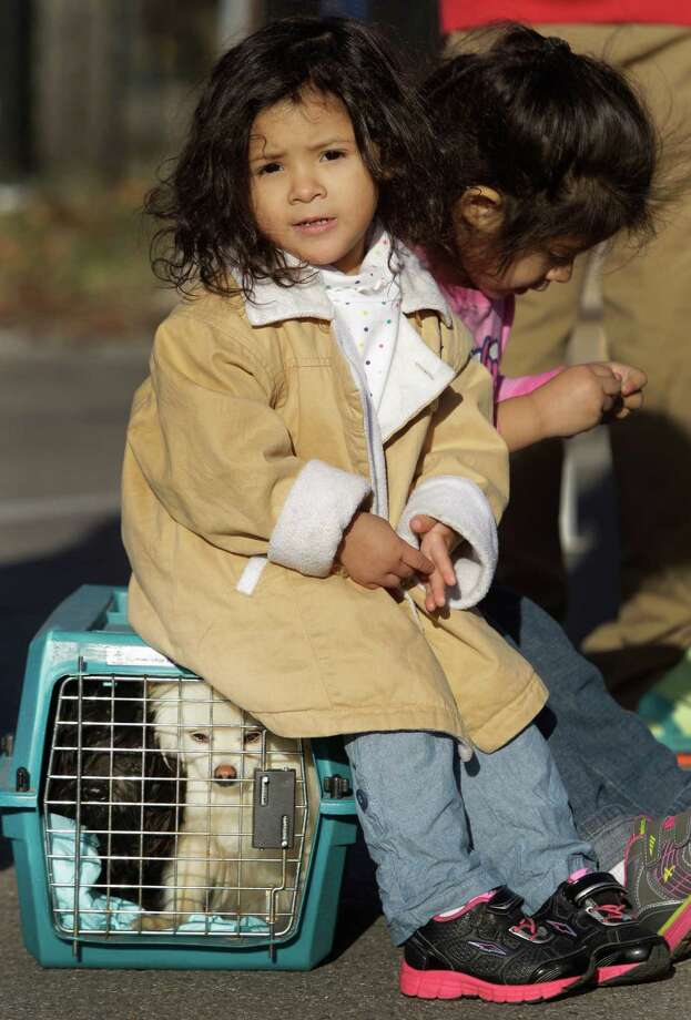 Izabella Llona, left, 2, and her sister, Jayla Llona, 3, sit on dog kennel while in line for free rabies vaccinations for their dogs, Chavo, left, Cupcake, right, during the Healthy Pets Healthy Streets Initiative. Photo: Melissa Phillip, Houston Chronicle / © 2014  Houston Chronicle