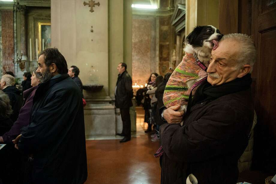 Before a pooch can be blessed at Saint Eusebio Church in Rome on the feast of St. Anthony the Abbot, his owner's forehead must be thoroughly anointed. Photo: Giorgio Cosulich, Getty Images