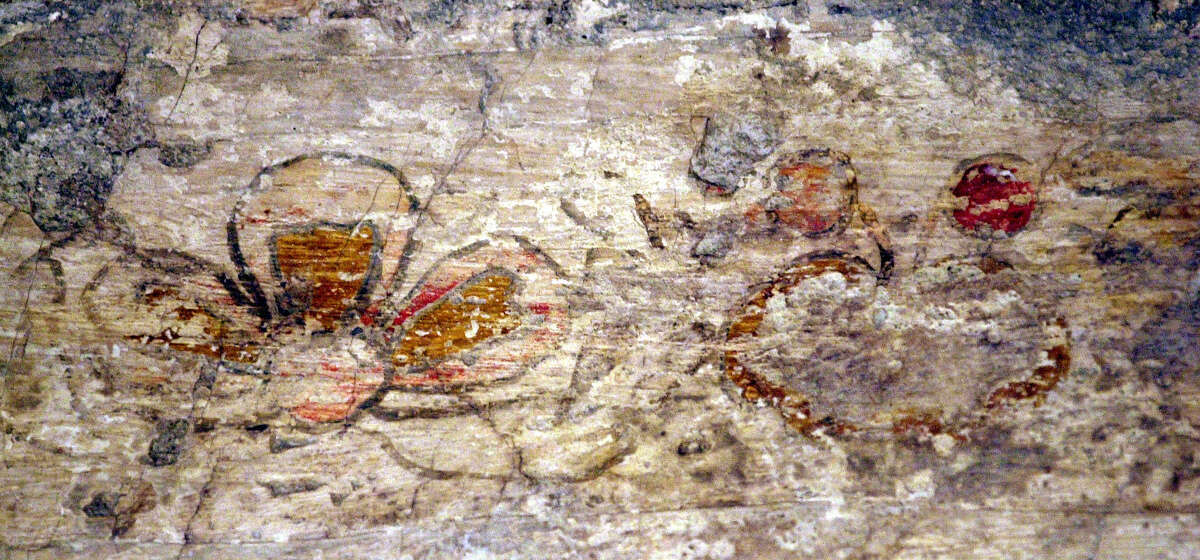 A flower is depicted on the left and what is believed to be a pomegranate is seen on the right in two frescoes discovered 14 years ago on the Alamo's sacristy walls. New research on those faded frescoes is unveiling information about how the room was used in the early stages of the mission's life.