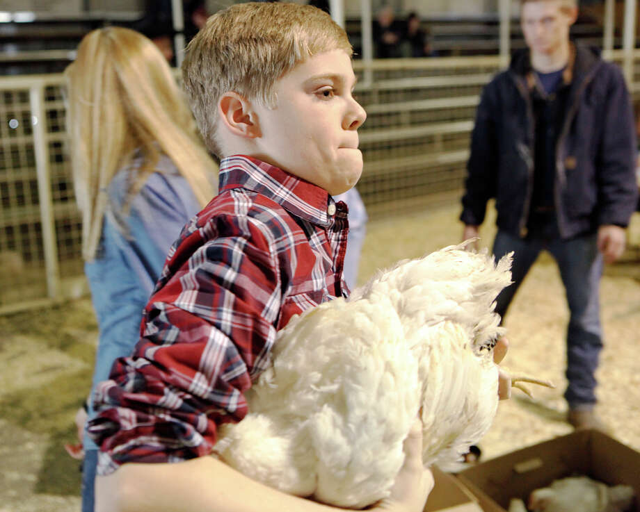 Caleb Wilson, 13, takes his chickens to be checked before being judged at the  41st annual Walter Gerlach Livestock Show Monday, Jan. 20, 2014, at the Gerlach Show Barn off of Babcock Road. Photo: Cynthia Esparza, For The San Antonio Express-News / For the San Antonio Express-News