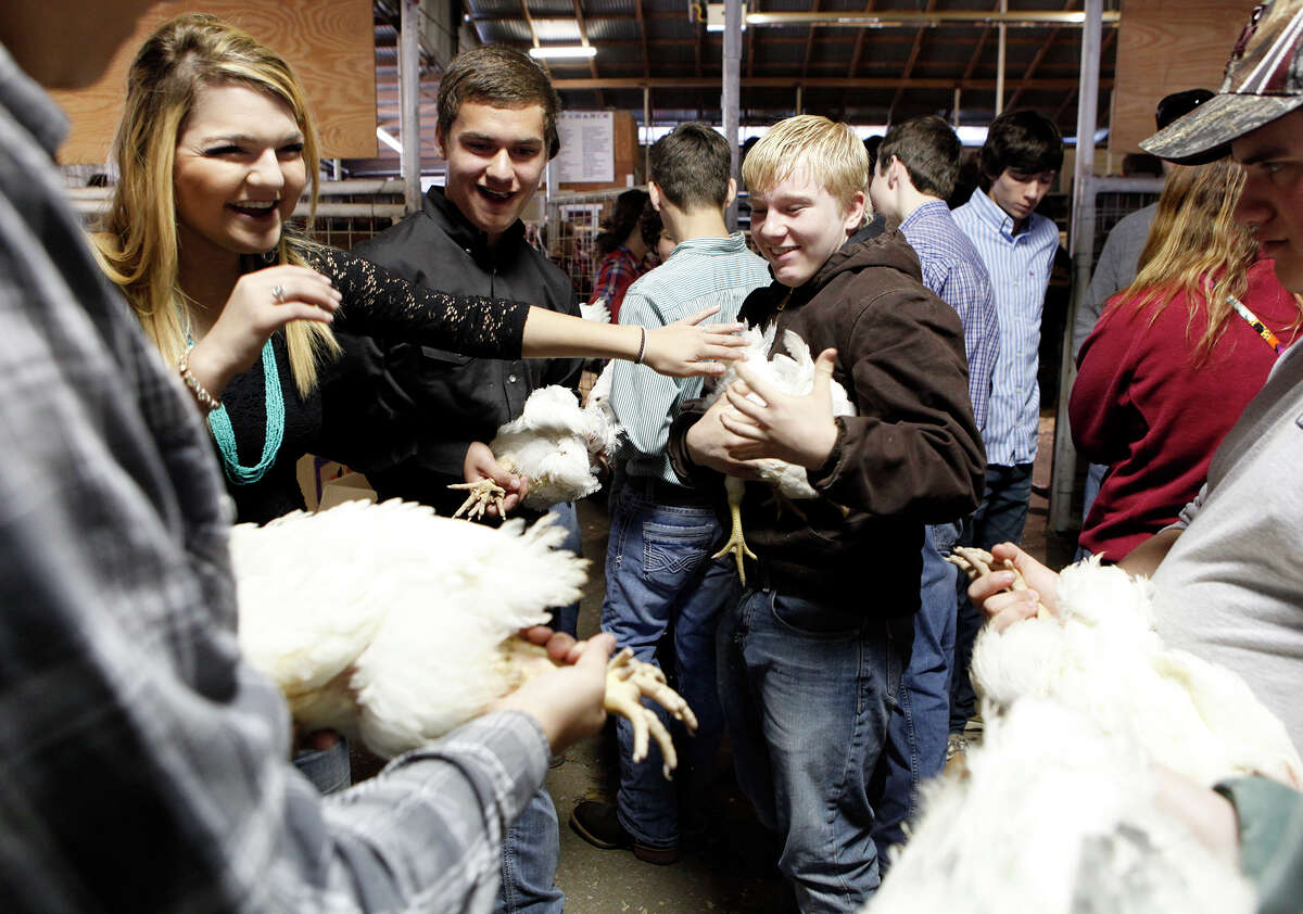 Bree Forrest (from left), Tyler Forrest and Matthew Smith play around Monday, Jan. 20, 2014, before Tyler and Matthew enter the arena to have their chickens judged during the 41st annual Walter Gerlach Livestock Show at the Gerlach Show Barn off of Babcock Road.