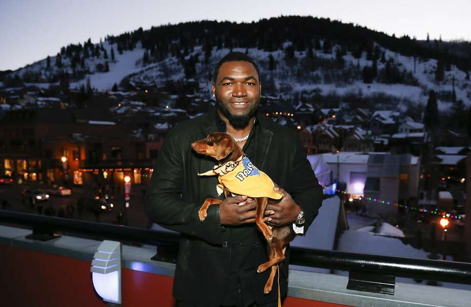 """Boston Red Sox baseball player David Ortiz poses with a rescue dog named Charlie to help launch Pedigree Brand's """"See what good food can do."""" documentary-style campaign along with actor Josh Duhamel, not pictured, to help shelter dogs during the 2014 Sundance Film Festival, on Monday, Jan. 20, 2014 in Park City, Utah. (Photo by Danny Moloshok/Invision/AP) Photo: Danny Moloshok, Associated Press"""