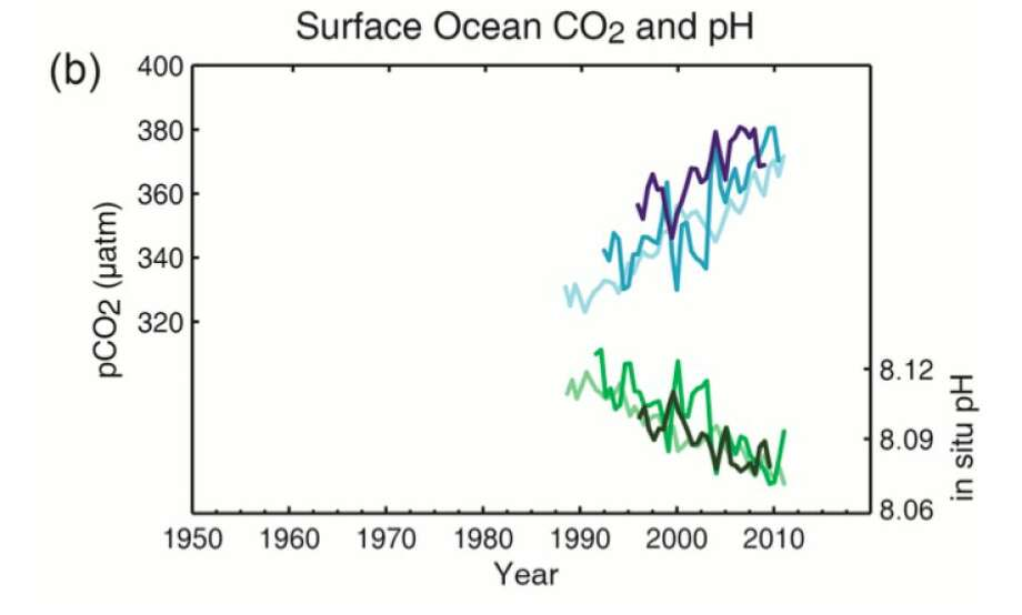 Multiple observed indicators of a changing global carbon cycle: (b) partial pressure of dissolved CO2 at the ocean surface (blue curves) and in situ pH (green curves), a measure of the acidity of ocean water. Measurements are from three stations from the Atlantic (29°10′N, 15°30′W – dark blue/dark green; 31°40′N, 64°10′W – blue/green) and the Pacific Oceans (22°45′N, 158°00′W − light blue/light green). (Graphic from the The Intergovernmental Panel on Climate Change)