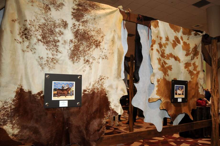 Some of the hides on display at the Houston Livestock Show and Rodeo Junior  Market Steer Auction Buyers Appreciation Party Photo: Dave Rossman, For The Houston Chronicle