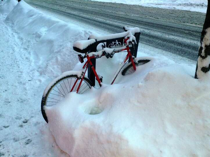 Martin Hatcher took this shot of an overwhelmed bicycle on Lark Street in Albany after  the first bi