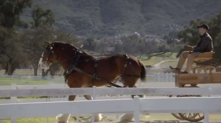 2. Budweiser: Clydesdales, 2013View the videoSource: Unruly Media