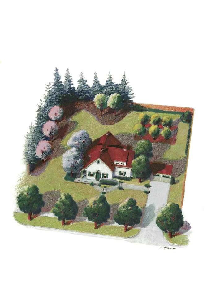 Arbor Day Foundation illustration