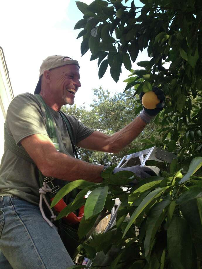 Kent Keith is the co-founder of FruitShare Houston, which harvests unwanted fruit and donates it to places like the Houston Food Bank. Photo: Heather Alexander