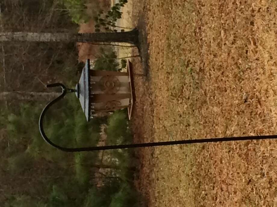 Photo emailed by Rachel Stambaugh in Fannett.