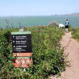 Hike the Coastal Trail where some of the most intact natural habitat in the Presidio harbors rare plants.