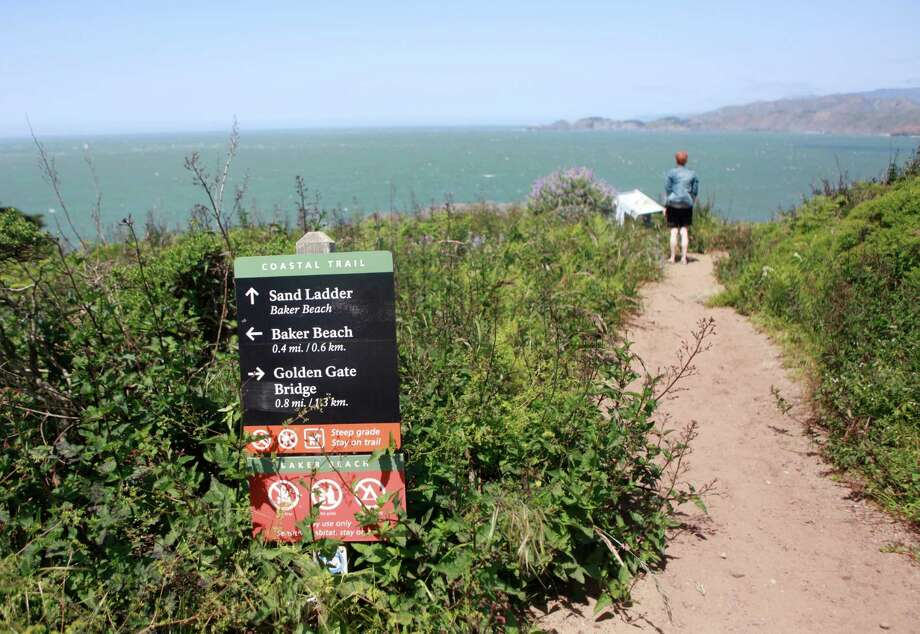 Hike the Coastal Trail where some of the most intact natural habitat in the Presidio harbors rare plants. Photo: Jill Schneider, The Chronicle / ONLINE_YES