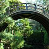 Climb over the moon bridge in the Japanese Tea Garden.