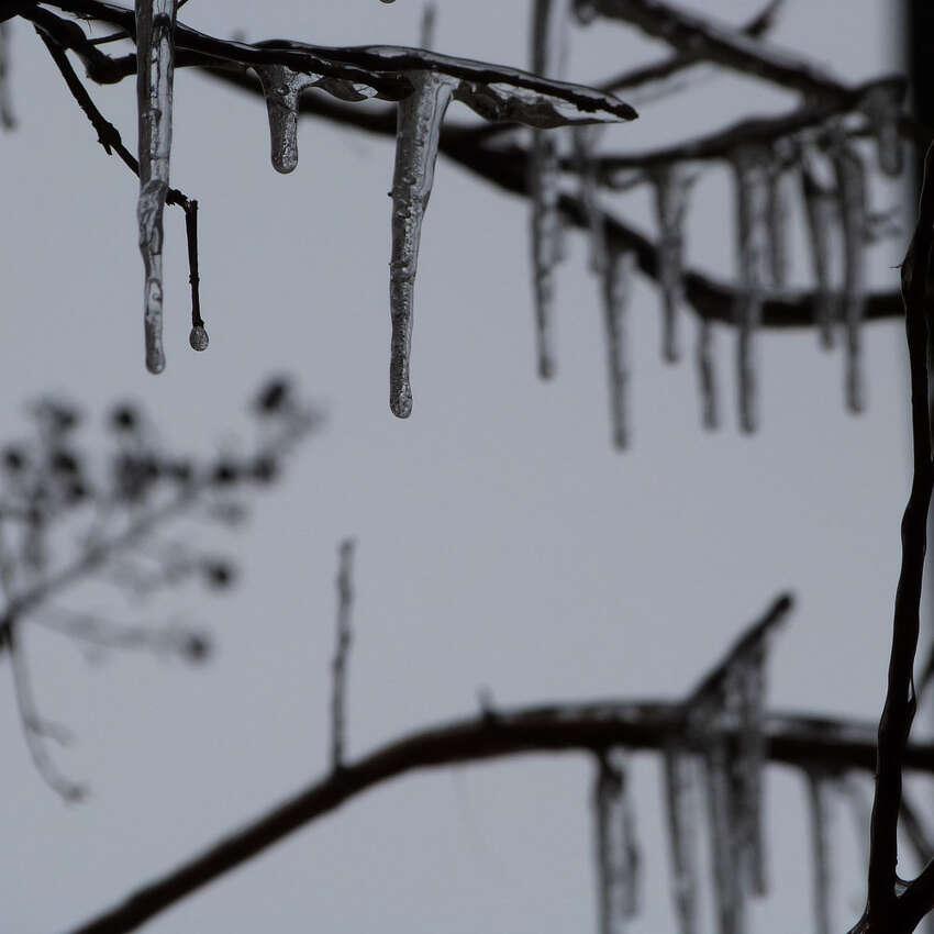 4. Dec. 23, 1989 Low: 6 degrees