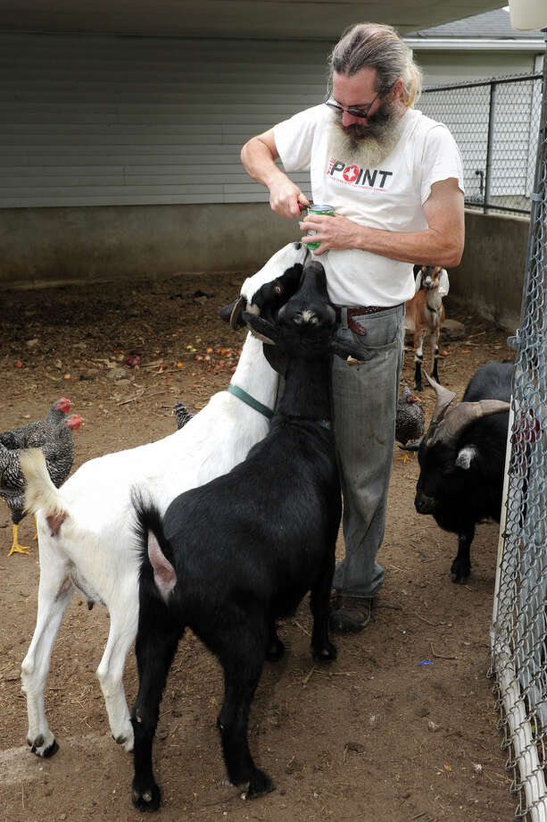 Chris Toole keeps a small variety of farm animals, including chickens, goats, donkeys and a pig at the Bridgeport Animal Control property, in Bridgeport, Conn., Oct. 11, 2013. Photo: Ned Gerard / Connecticut Post