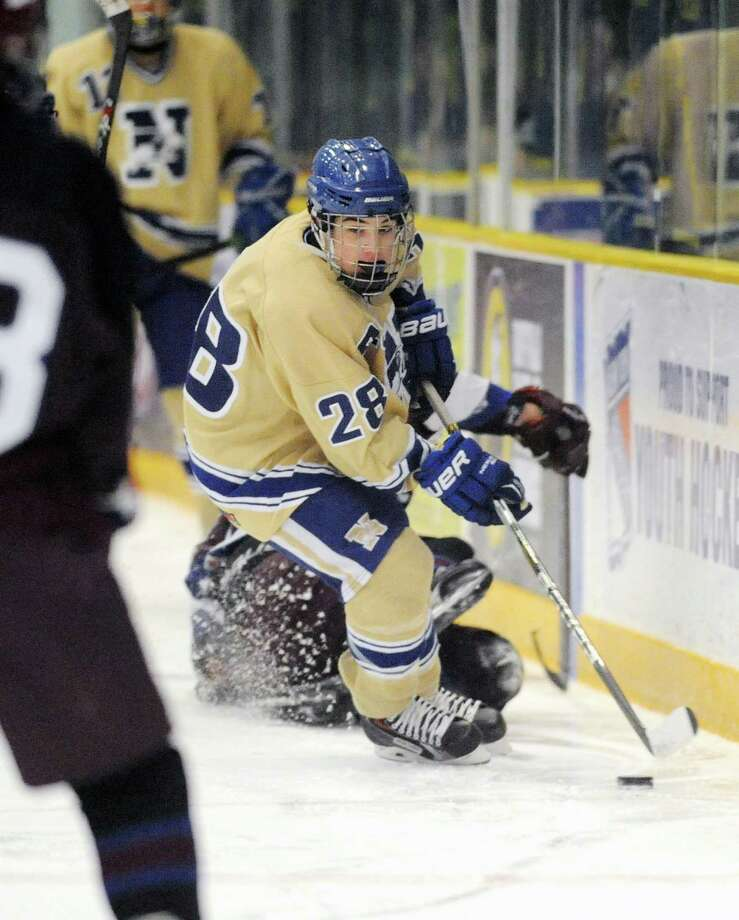 Newtown's Dominic Cartelli (28) controls the puck in Newtown's 3-1 win over Brookfield/Bethel/Danbury in the high school hockey game at Danbury Arena in Danbury, Conn. on Saturday, Jan. 25, 2014. Photo: Tyler Sizemore / The News-Times
