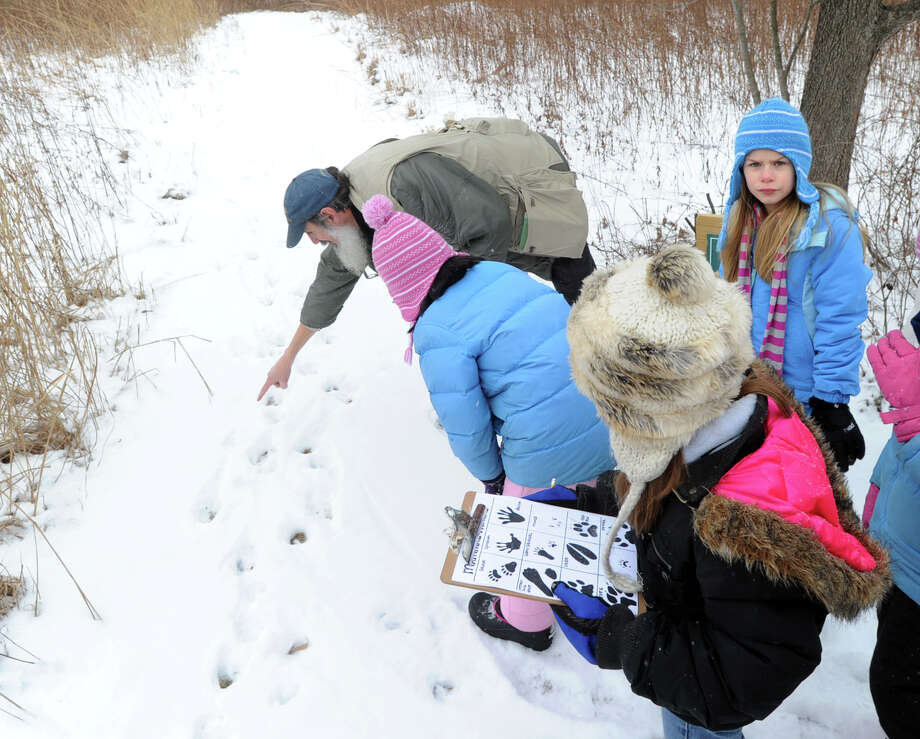 Audubon Greenwich Naturalist, Ted Gilman, lower left, points to animal tracks in the snow while teaching a Wildlife Tracking Class at Audubon Greenwich, Saturday afternoon, Jan. 25, 2014. At top right is Juliana Cenzi, 8, of Greenwich. Photo: Bob Luckey / Greenwich Time
