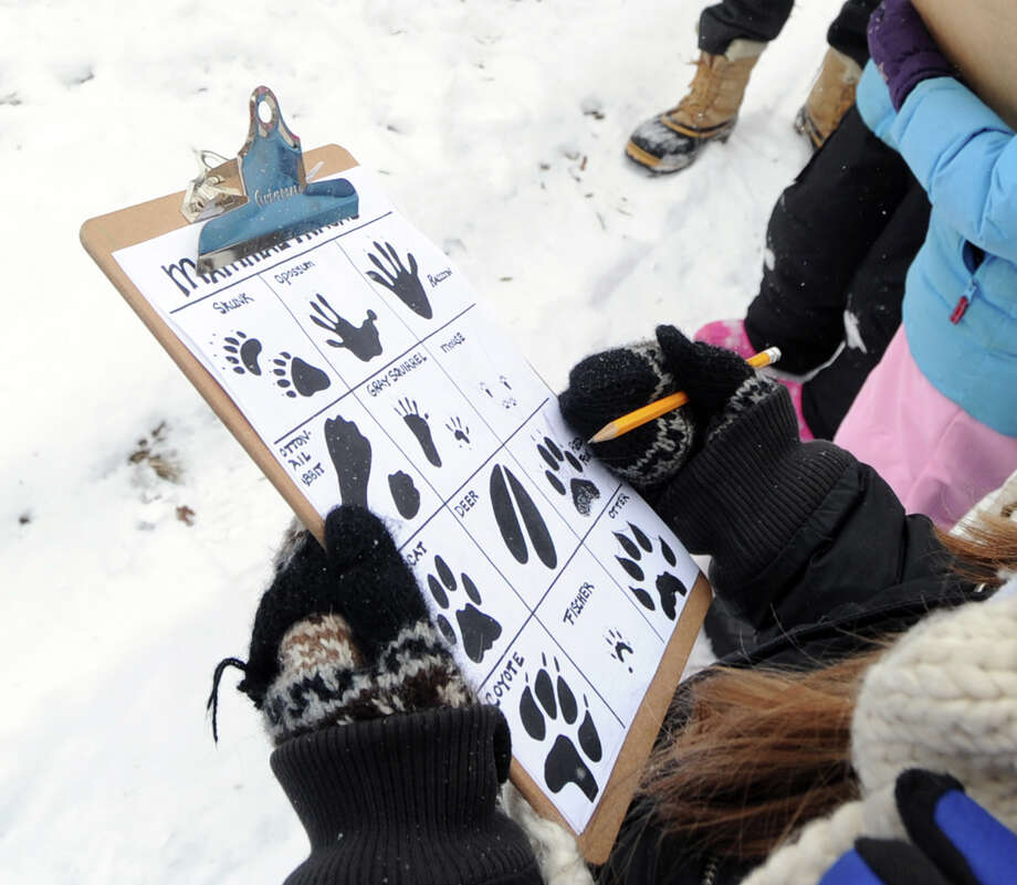 Zoe Edwards, 9, of Greenwich, takes note while attending a Wildlife Tracking Class at Audubon Greenwich, Saturday afternoon, Jan. 25, 2014. Photo: Bob Luckey / Greenwich Time