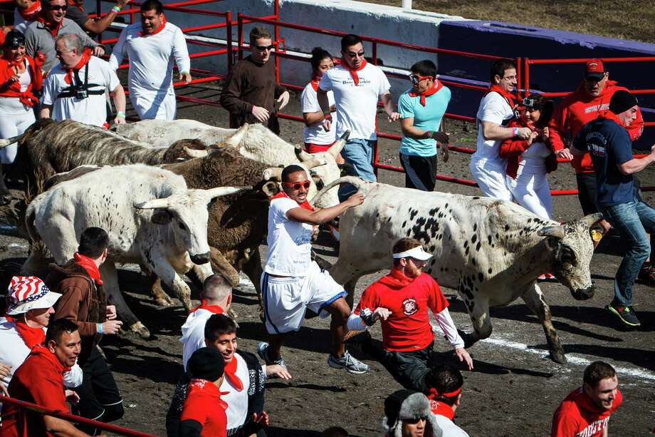 Runners try to stay ahead of the bulls during the Great Bull Run at Royal Purple Raceway, Saturday, Jan. 25, 2014, in Baytown. Photo: Michael Paulsen, Houston Chronicle / © 2014 Houston Chronicle