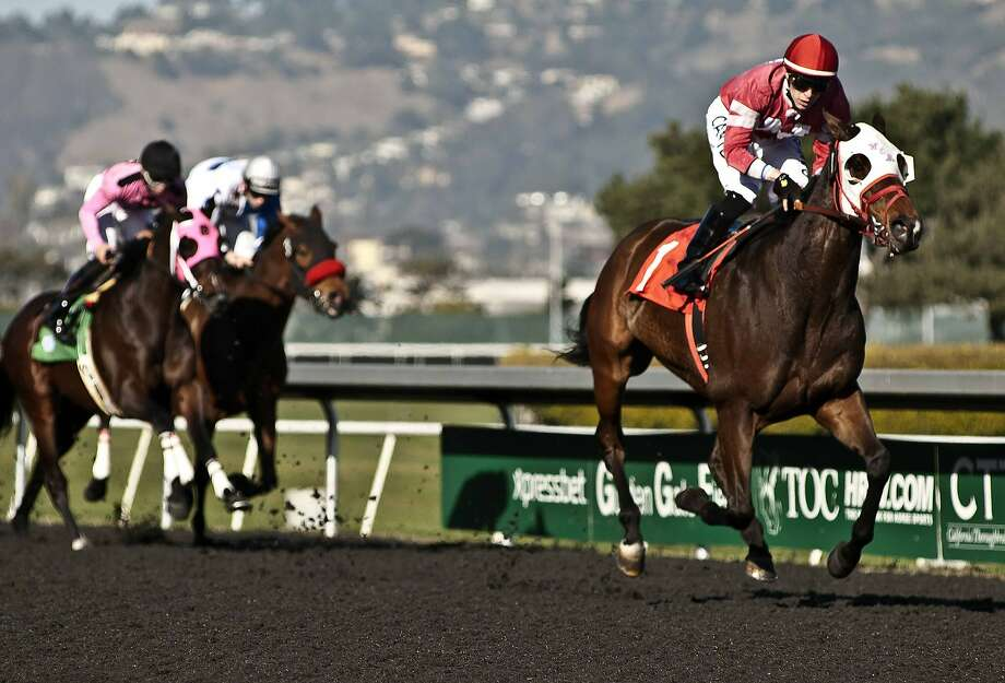 Beast of Bourbon, with jockey Juan Hernandez, dominated the 11/16-mile feature race at Golden Gate Fields. Code of Conduct (far left) and Little Jerry finished second and third. Photo: Shane Micheli, Vassar Photography