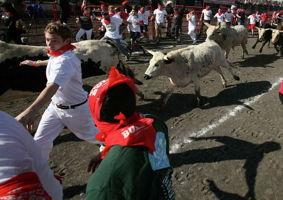 Adventure seekers rush to stay ahead of the bovines in The Great Bull Run at Royal Purple Raceway on Saturday. Photo: Mayra Beltran, Staff / © 2013 Houston Chronicle
