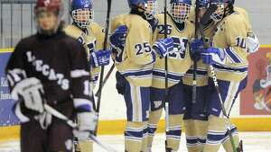 Newtown celebrates a second-period goal in Newtown's 3-1 win over Brookfield/Bethel/Danbury in the high school hockey game at Danbury Arena in Danbury, Conn. on Saturday, Jan. 25, 2014.