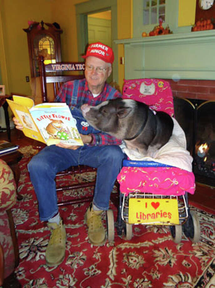 "Farmer Minor and his pot-belly pig, Daisy, will read and entertain children and their parents Saturday, Feb. 1, as part of the third annual ""Take your Child to the Library Day."" Photo: Contributed Photo, Contributed / New Canaan News Contributed"
