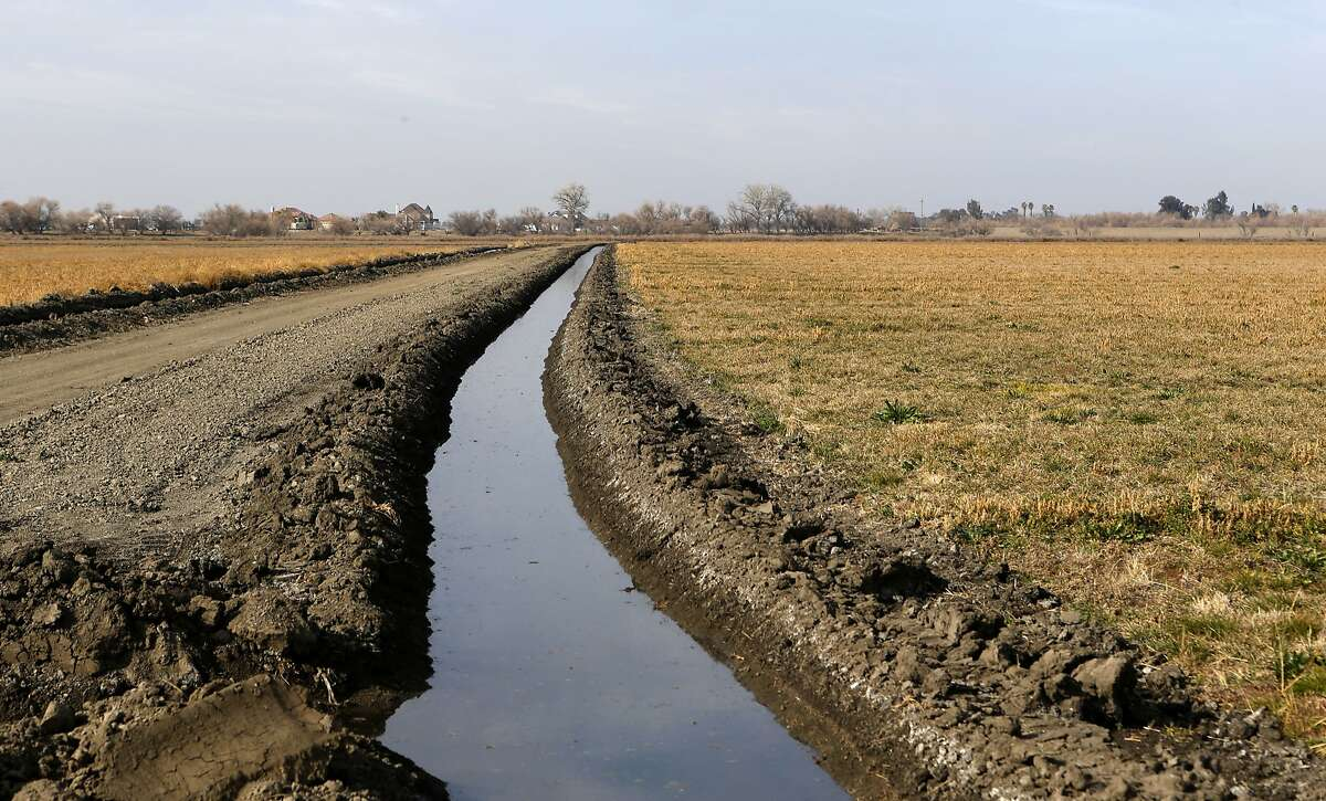 San Joaquin River water is pumped into small canals next to fields at the Patterson Westside Farms to irrigate crops, in Patterson, Calif. on Monday Jan. 27, 2014. The farm supplements the river water with water from the Patterson Irrigation District.