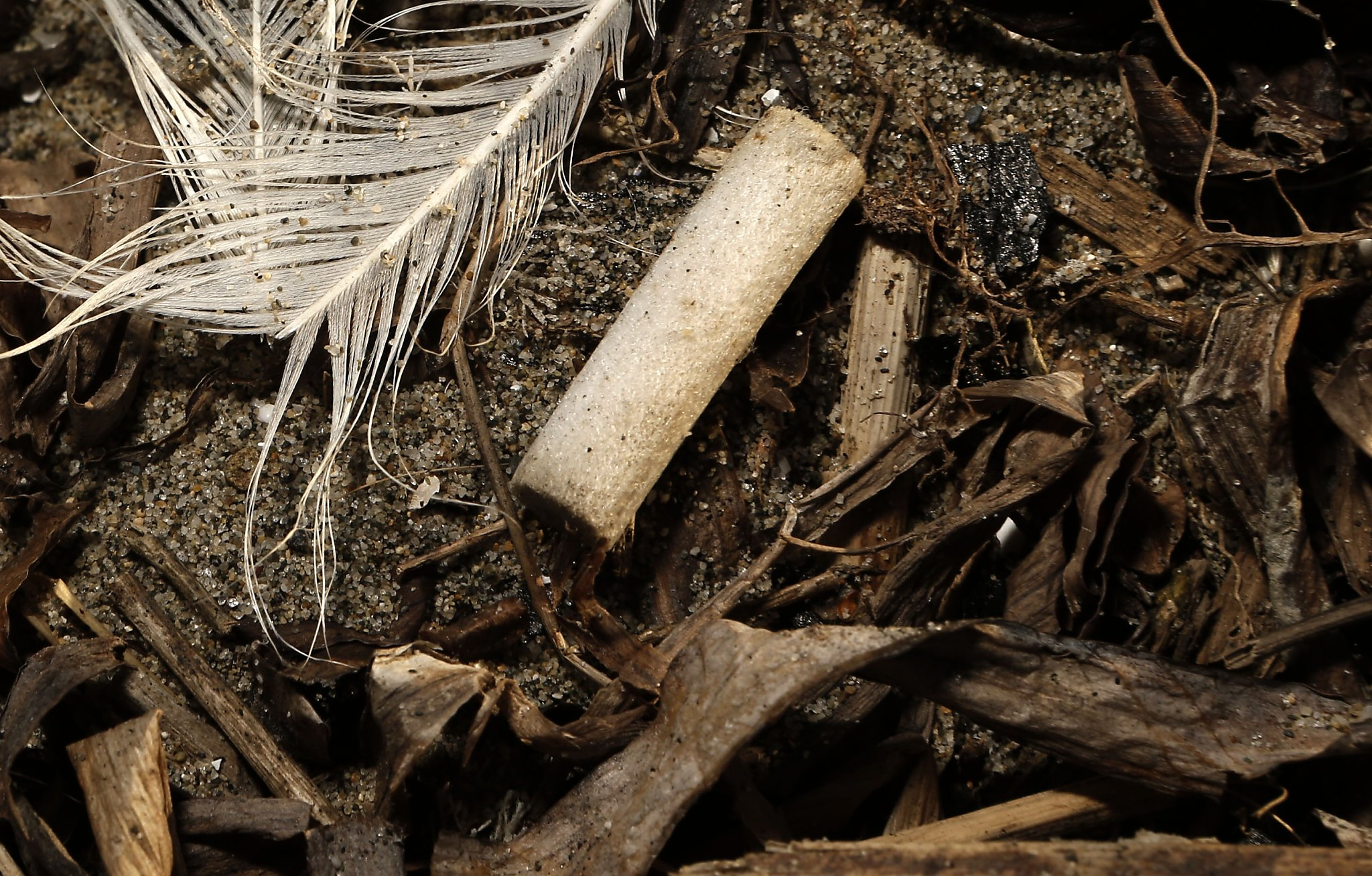 Kicking cigarette butts out of California is aim of bill - SFGate
