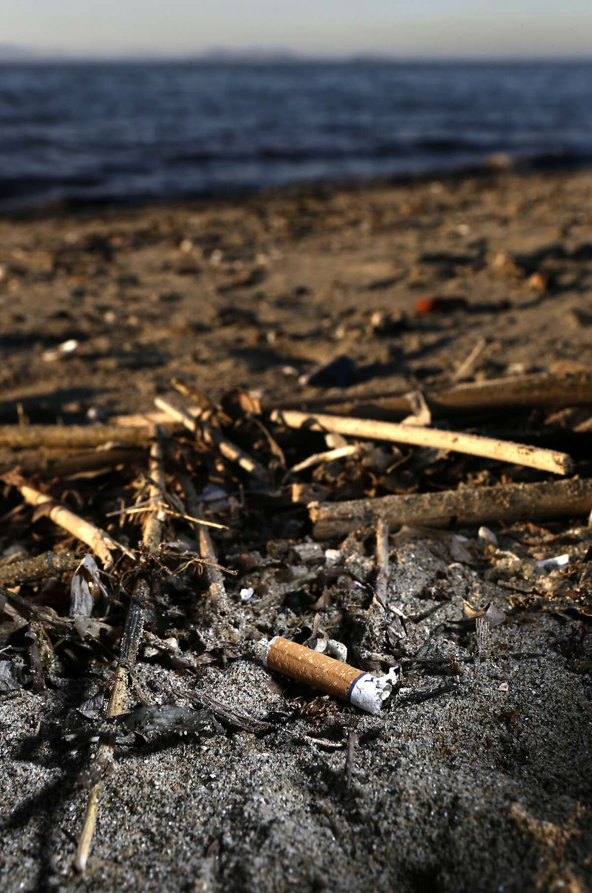 Cigarette filters are seen washed up on shore along the edge of San Francisco Bay on Wednesday Jan. 22, 2014, near Emeryville, Calif. New legislation introduced last week by state Assemblyman Mark Stone, D-Monterey underscores just how potent cigarette single use filters are. As many as 845,000 tons of cigarette buffeters wind up as litter around the globe annually.
