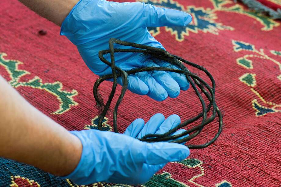 Drug rug: An officer at the main customs office in Dresden, Germany, shows sheathed cords containing heroin that were woven into a carpet. German customs officials seized 100 pounds of heroin hidden inside the fabric of Iranian carpets intercepted at an airport. Photo: Arno Burgi, AFP/Getty Images