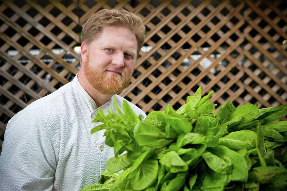 Randy Evans holds freckles lettuce freshly cut from his garden. Evans is the chef and owner of Haven, a seasonal farm table restaurant located in Houston, and has been planting vegetables since he established the restaurant four years ago.  Photo: Marie D. De Jesus, Staff / © 2014 Houston Chronicle