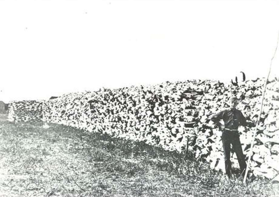 "Ottawa has nothing on the original name of another Canadian city: ""Pile of Bones,"" named that because Cree hunters stacked the bones of killed buffalo in the belief that buffalo herds would return to the area to visit the bones. Photo: Regina Library"