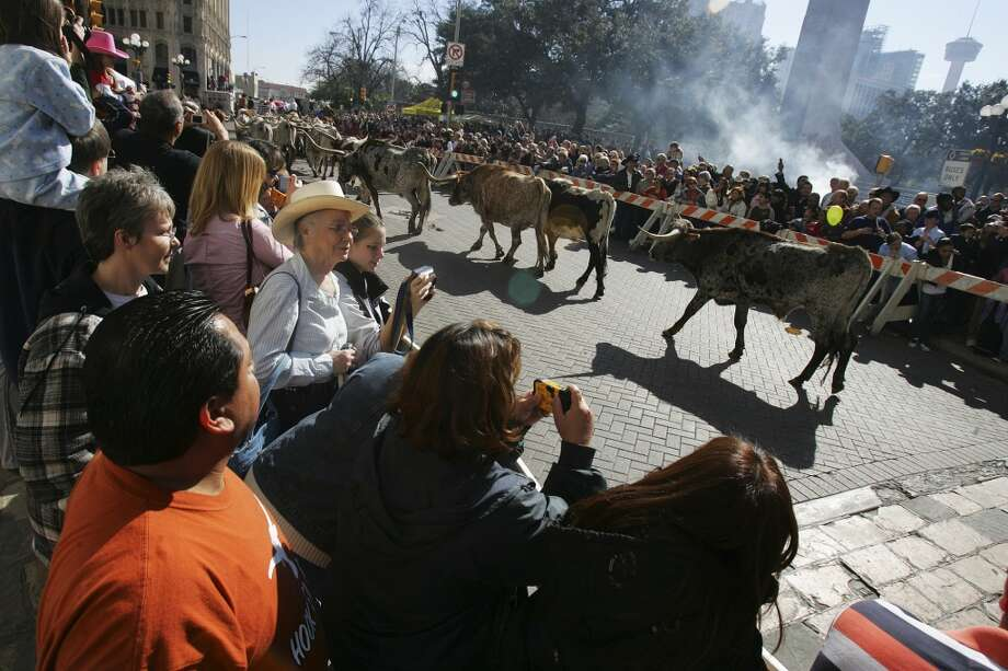 People line Houston Street for the cattle drive in 2008. Photo: Express-News, File Photo